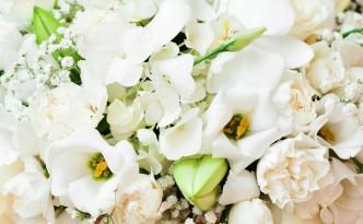 Svatební kytice a aranžmá - Bílé květiny - Bílá svatba